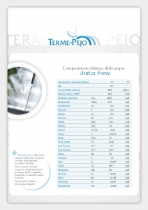Pejo Thermal Spa thermal waters chemical composition
